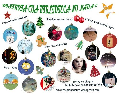 Boletin recomendacion nadal 2012-12
